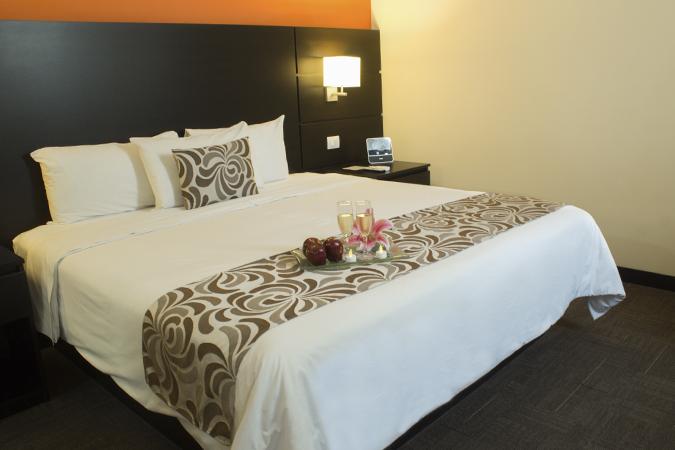 Double Room - Hotel El Gran Marques